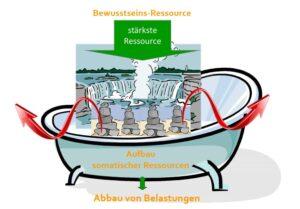 Somatische Ressourcen